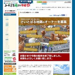 さいとばる地鶏のオーナーを募集 - オーナー制度 - みやざき地どれ市場(宮崎県地場産品ポータルサイト)