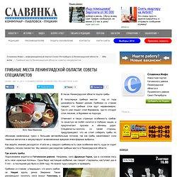 Славянка Инфо - информационный портал Санкт-Петербурга и Ленинградской области