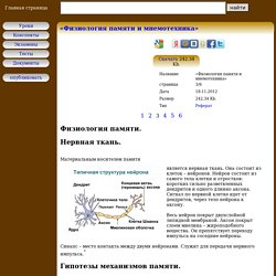 Физиология памяти - «Физиология памяти и мнемотехника»