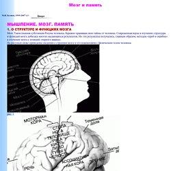 Мозг ипамять