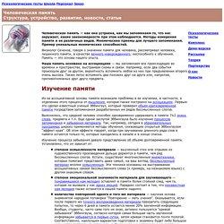 Человеческая память: Структура, устройство, развитие, новости, статьи
