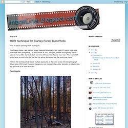 HDR Technique pour Stanley forêt brûler photo