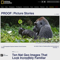 Ten Nat Geo Images That Look Incredibly Familiar … Here's Why