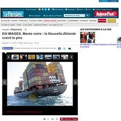EN IMAGES. Marée noire : la Nouvelle-Zélande craint le pire