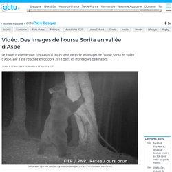 video-images-lourse-sorita-vallee-daspe_29442410