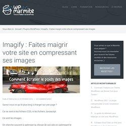 Imagify : Faites maigrir votre site en compressant ses images