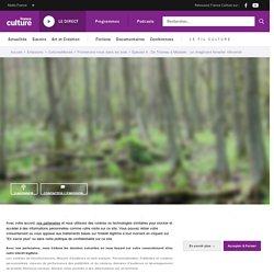 Promenons-nous dans les bois (4/4) : De Thoreau à Miyazaki: un imaginaire forestier réinventé