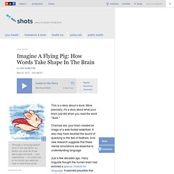 Imagine A Flying Pig: How Words Take Shape In The Brain : Shots - Health News