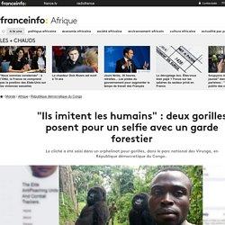 """""""Ils imitent les humains"""" : deux gorilles posent pour un selfie avec un garde forestier"""