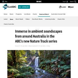 Immerse in ambient soundscapes from around Australia in the ABC's new Nature Track series - News - ABC Classic