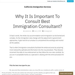 Why It Is Important To Consult Best Immigration Consultant? – California Immigration Services