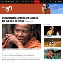 Bushmen face imminent eviction for 'wildlife corridor'