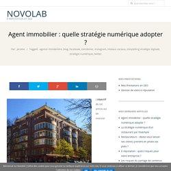 Agent immobilier : quelle stratégie numérique adopter ? – NovoLaB