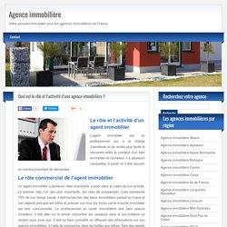 Rôle d'une agence immobilière: les différentes activités d'un agent immobilier