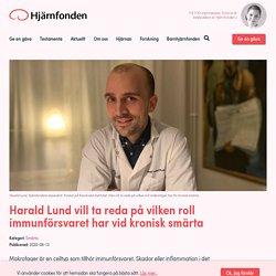 Harald Lund vill ta reda på vilken roll immunförsvaret har vid kronisk smärta
