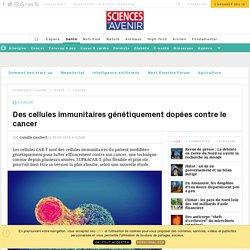 Les SUPRACAR-T : des cellules immunitaires génétiquement dopées contre le cancer