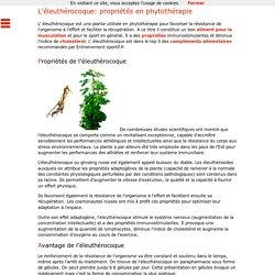 L'éleuthérocoque a des propriétés immunostimulantes