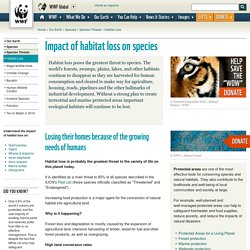 Impact of habitat loss on species