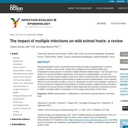 INFECTION ECOLOGY & EPIDEMIOLOGY - 2011 - The impact of multiple infections on wild animal hosts: a review