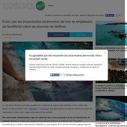 Estos son los impactantes testimonios de tres ex empleados de SeaWorld sobre las piscinas de delfines