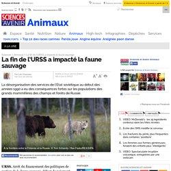 La fin de l'URSS a impacté la faune sauvage