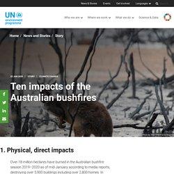 Ten impacts of the Australian bushfires