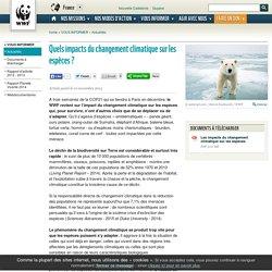 Quels impacts du changement climatique sur les espèces ?