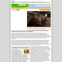 Focus: Les impacts de l'élevage sur l'environnement