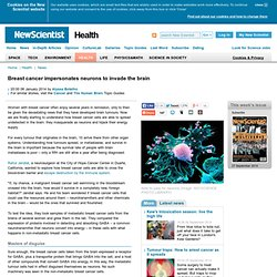 Breast cancer impersonates neurons to invade the brain - health - 06 January 2014
