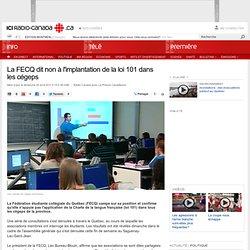 Réseau collégial : La FECQ dit non à l'implantation de la loi 101 dans les cégeps