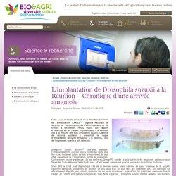 AGRICULTURE-BIODIVERSITE-OI 19/02/15 L'implantation de Drosophila suzukii à la Réunion – Chronique d'une arrivée annoncée
