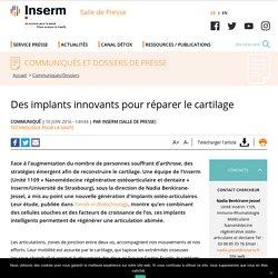 Des implants innovants pour réparer le cartilage