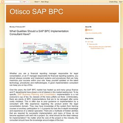 Otisco SAP BPC: What Qualities Should a SAP BPC Implementation Consultant Have?