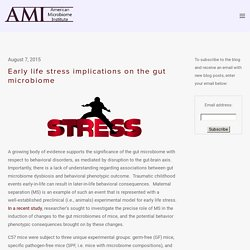 Early life stress implications on the gut microbiome — The American Microbiome Institute