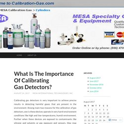 What Is The Importance Of Calibrating Gas Detectors?
