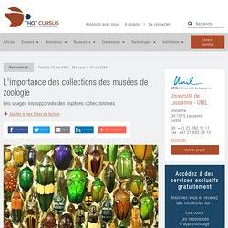 L'importance des collections des musées de zoologie - Thot Cursus