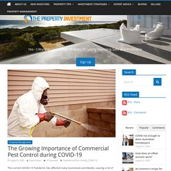 The Growing Importance of Commercial Pest Control during COVID-19 - The Property Investment Blog - Australian Investment Property Guide