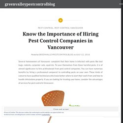 Know the Importance of Hiring Pest Control Companies in Vancouver
