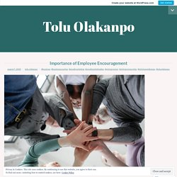 Importance of Employee Encouragement – Tolu Olakanpo
