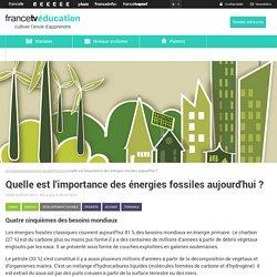 Quelle est l'importance des énergies fossiles aujourd'hui ?