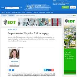 PIG333 22/05/17 Importance of Hepatitis E virus in pigs