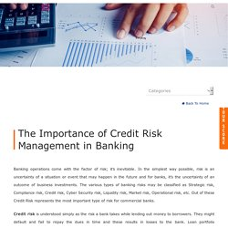 The Importance of Credit Risk Management in Banking