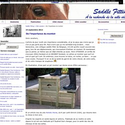 De l'importance du montoir - Saddle fitting