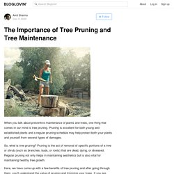 The Importance of Tree Pruning and Tree Maintenance
