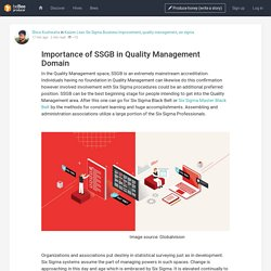 Importance of SSGB in Quality Management Domain