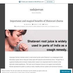 Importance and magical benefits of Shatavari churna – sadajeevan