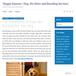 The Importance of Dog Care Services For Your Dog – Doggie Daycare and Boarding Services