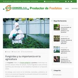 □ Fungicidas y su importancia en la agricultura