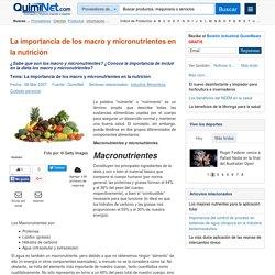 La importancia de los macro y micronutrientes en la nutrición