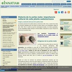 Historia de la yerba mate: importancia cultural de esta planta sudamericana - Innatia.com